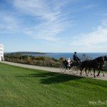 mackinac island wedding horse carriage photo